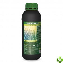 Bachumus evolution crecimiento 500 ml